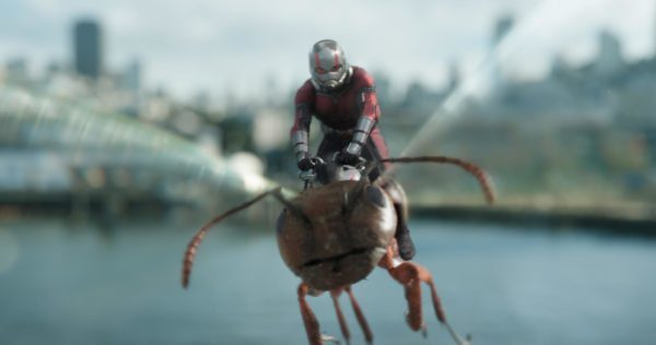 Ant-Man-and-the-Wasp-images-9-600x316-1-600x316