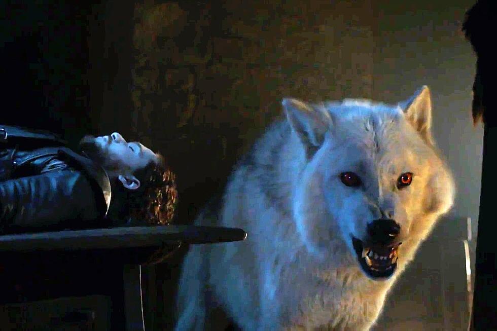El lobo huargo de Jon Snow volverá para la última temporada de Game of Thrones