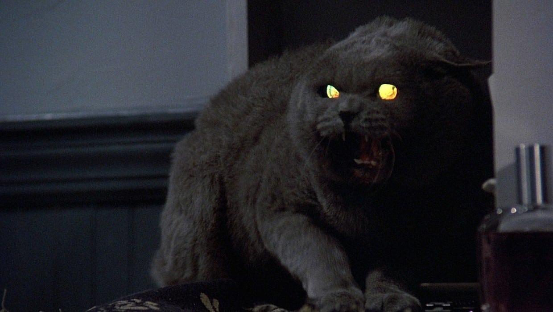 El guionista de Pet Sematary dice que el objetivo es hacer 'una de las adaptaciones más aterradoras de Stephen King'