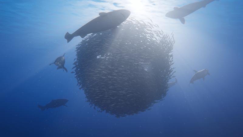 E-Line Media anuncia el título de exploración marina Beyond Blue